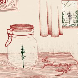 The Good Morning Nags – Mount Holler (single)