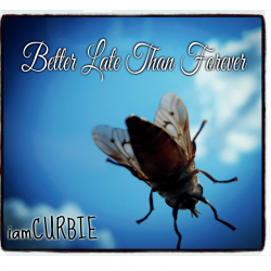 iamCURBIE – Better Late Than Forever