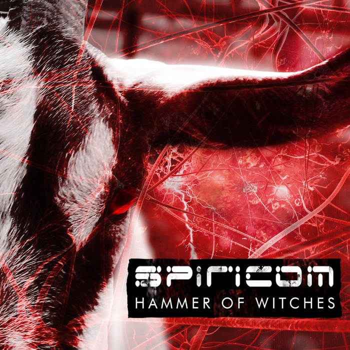 Spiricom – Hammer of Witches